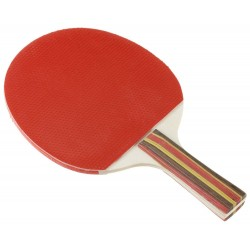 Raquette de ping pong de competition