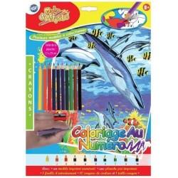 Coloriage aux Crayons au Numéro