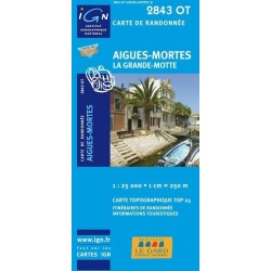 Carte IGN Top 25 Aigues Mortes