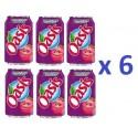 6 Canettes de Oasis Pomme Cassis Framboise 33 cl
