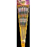 11 Fusées Géantes 1 Mètre