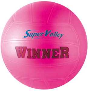 ballon-de-volley-ball